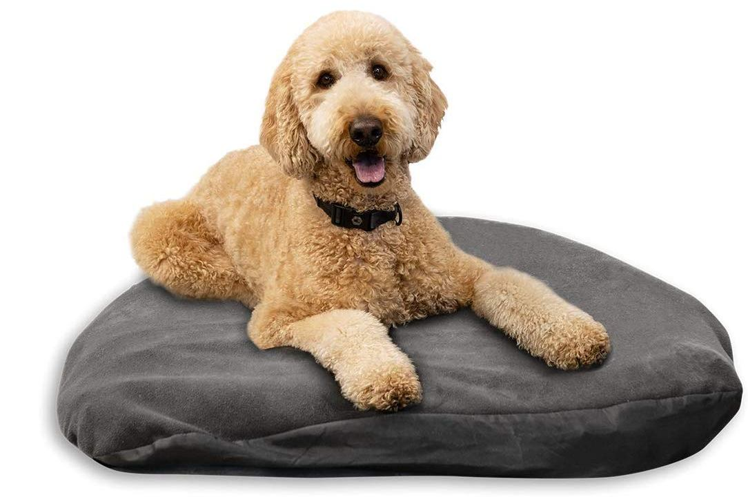 Dog Air Mattresses